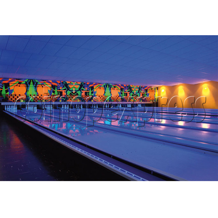 Professional Bowling center (10 lanes) 24659