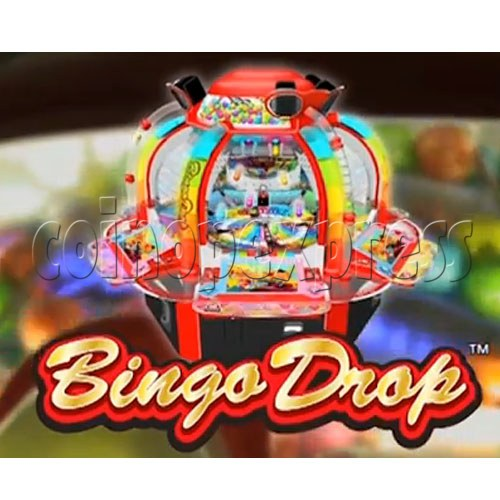 Bingo Drop Medal Game ( 12 players) 28508